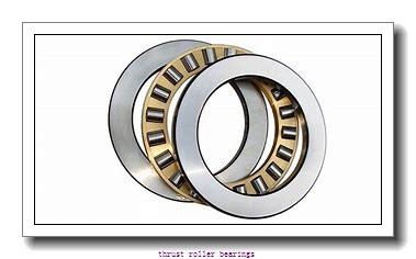 INA 29460-E1 thrust roller bearings