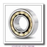 380,000 mm x 520,000 mm x 65,000 mm  NTN NU1976 cylindrical roller bearings