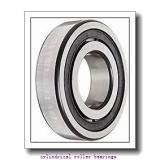 105 mm x 190 mm x 36 mm  ISB NUP 221 cylindrical roller bearings