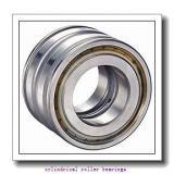 Toyana NJ18/1000 cylindrical roller bearings
