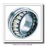 30 mm x 62 mm x 20 mm  NSK 22206CKE4 spherical roller bearings