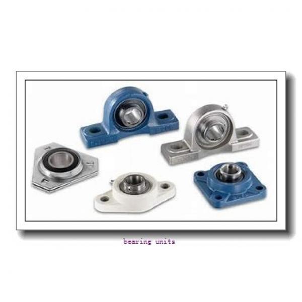 INA RAKY1-7/16 bearing units #1 image