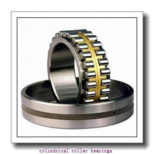 55 mm x 120 mm x 43 mm  NKE NJ2311-E-MPA cylindrical roller bearings #2 image