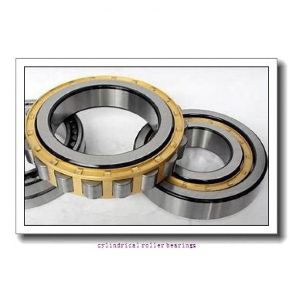 55 mm x 120 mm x 43 mm  NKE NJ2311-E-MPA cylindrical roller bearings #1 image