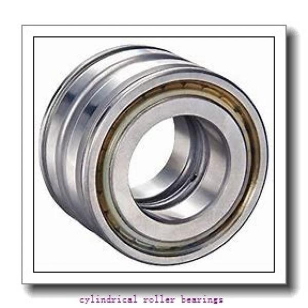 500 mm x 670 mm x 78 mm  ISO NF19/500 cylindrical roller bearings #1 image